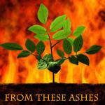 AshesFinalPRINTCoverFRONT5.375x8.25inch300dpi