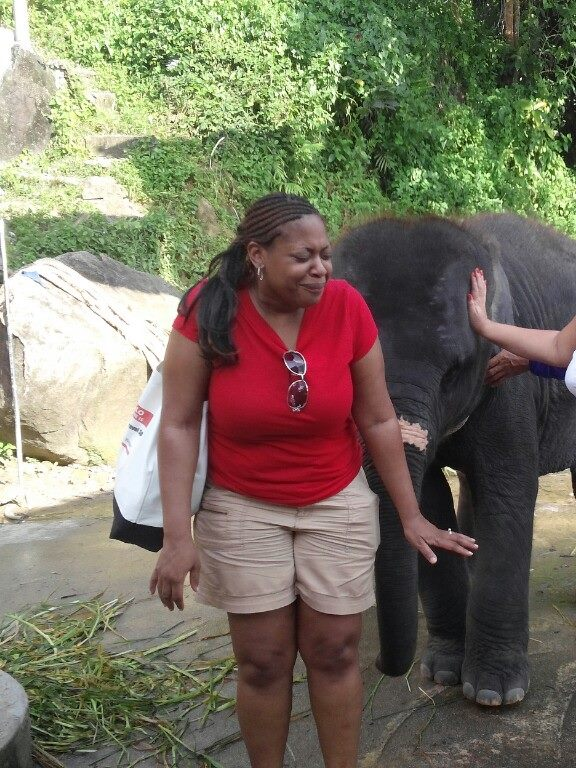 A Baby Elephant Sneezed on Me