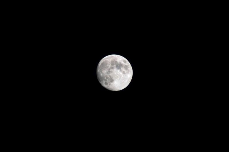 Virginia Moon 1