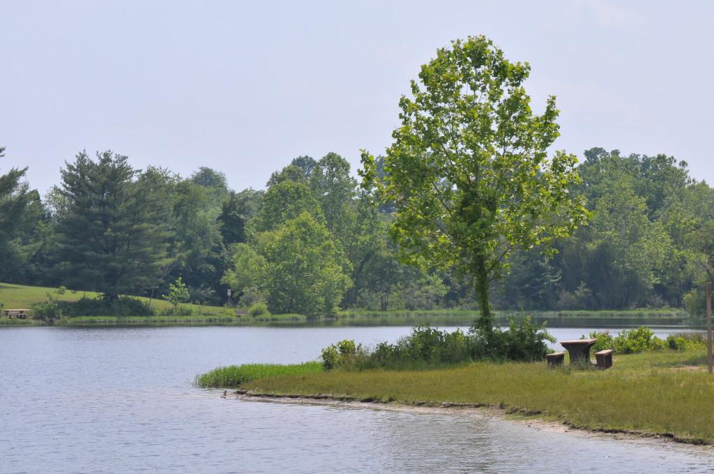Silver Lake Park, Tough Mudder