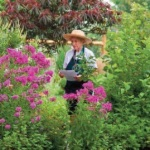 Master Gardener Jean Bennett taking inventory of plants in the Four Seasons garden