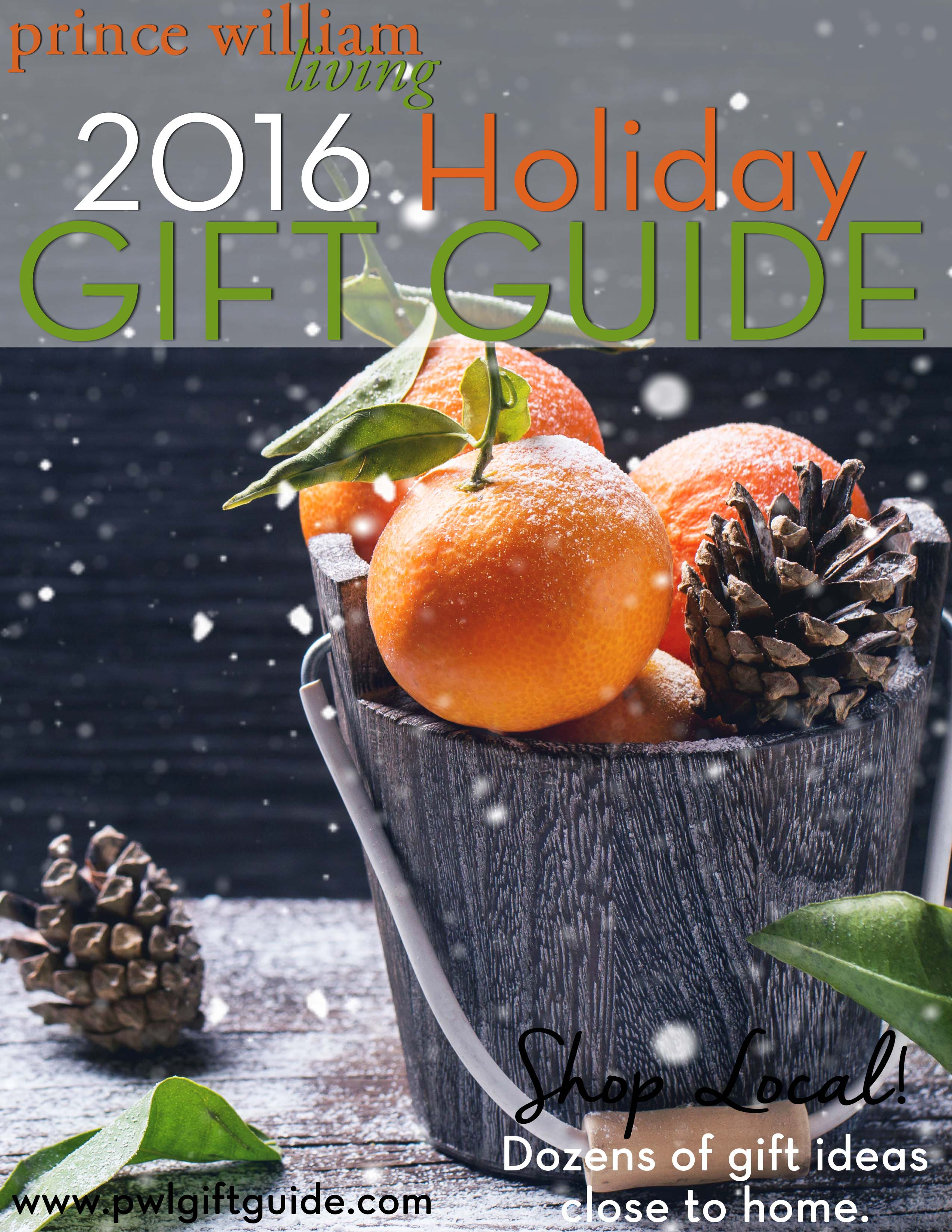 2016 Gift Guide Cover Web