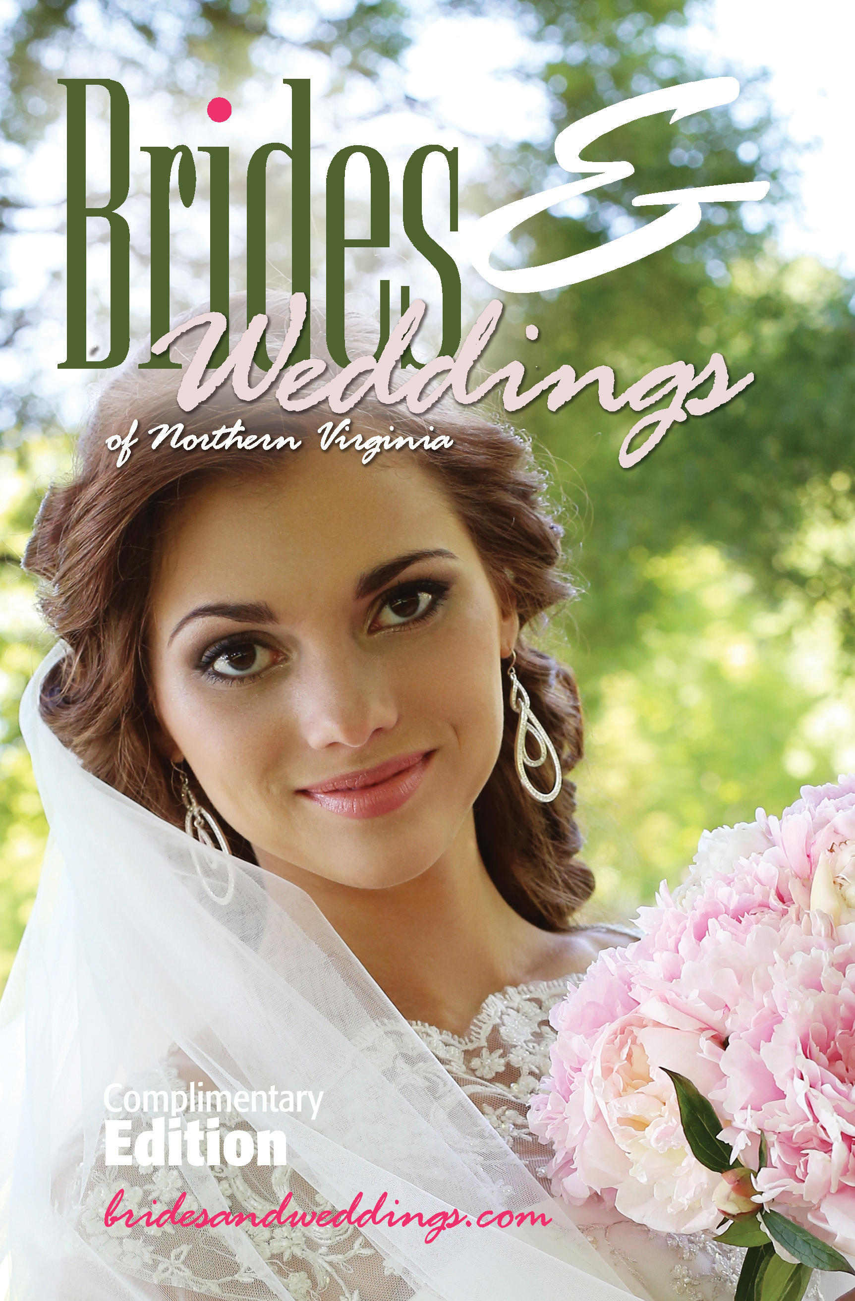 Brides & Weddings (29)
