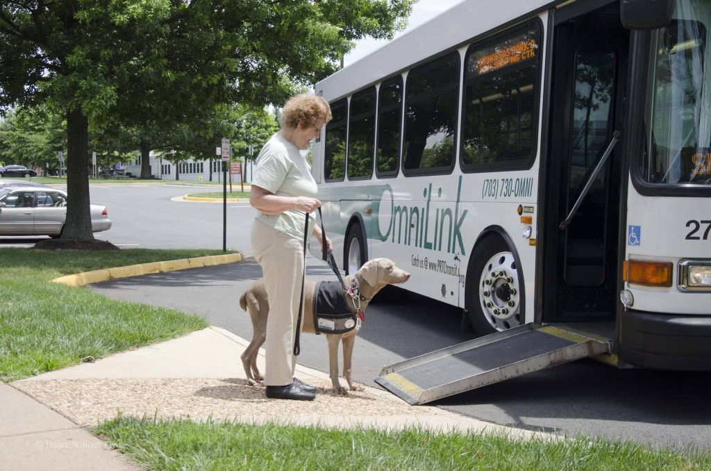 Public transportation helps residents with disabilities get to their destinations. Lower fuel prices means less fuel tax income that helps fund these budgets. A budget shortfall is predicted for FY 2017, which starts next summer.