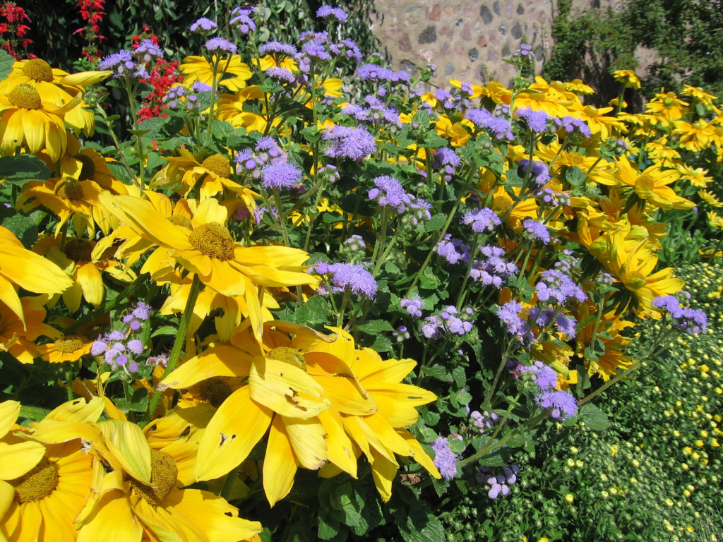Back to basics low maintenance flower garden care for Perennial garden maintenance