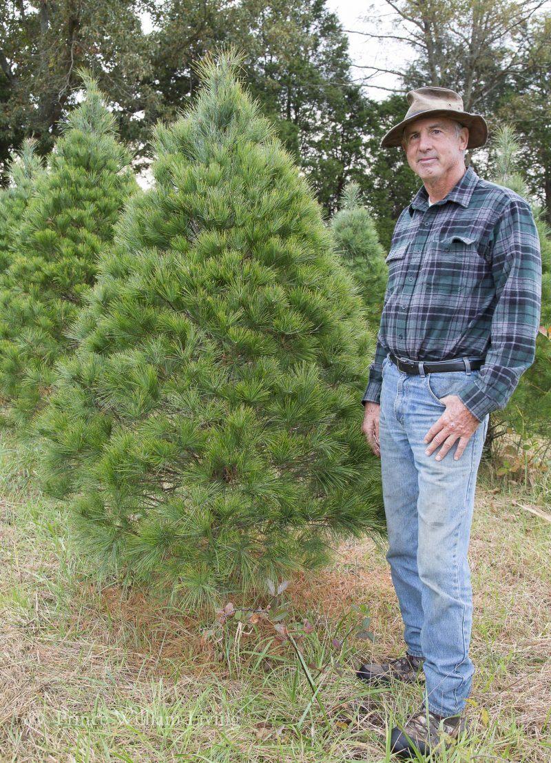 Jim Gehlsen of Evergreen Acres