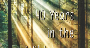 40 Years in the Wilderness by Norma Jean Burnette
