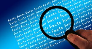 ROI Advertising Marketing Myths, Rebecca's Blog, Content Marketing