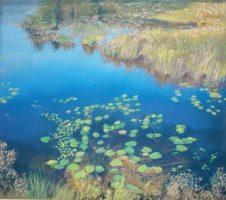 High Altitude Marsh by Kathleen Best Gillman