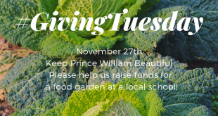 giving tuesday, Keep Prince William Beautiful