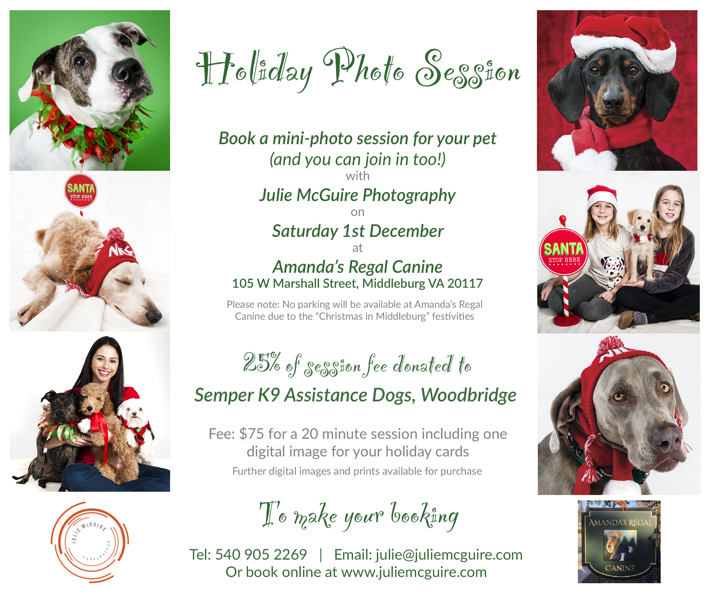 Mini Holiday Photo Sessions for Pets and their People | Prince ...